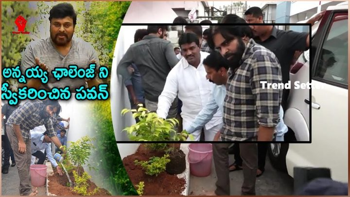 Pawan Kalyan Aceepted Chiranjeevi's Harithaharam Challenge | Trend Setter
