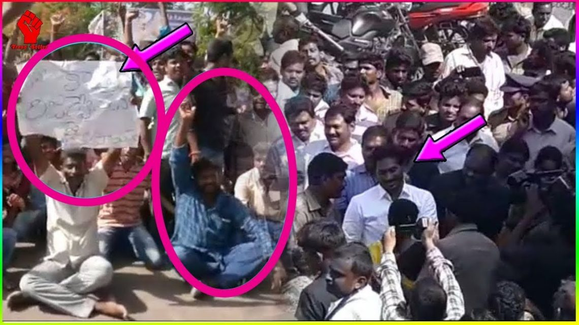 Pawan Kalyan Fans Fire ON YS Jagan Mohan Reddy Comments   Trend Setter