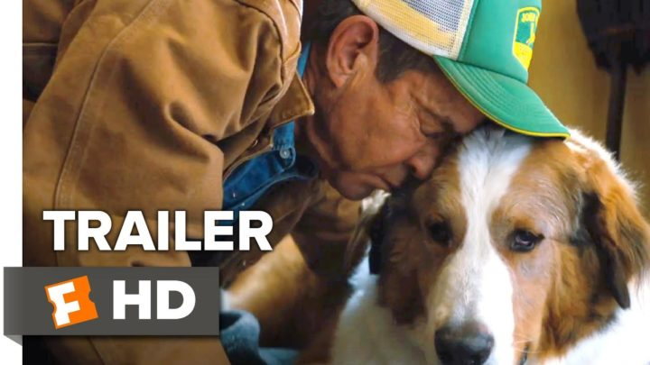 A Dog's Journey Trailer #1 (2019) | Movieclips Trailers