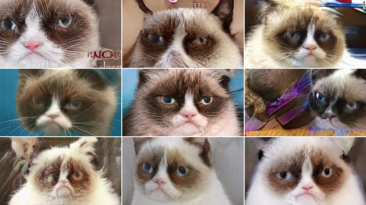Grumpy Cat is dead, but will live on through AI