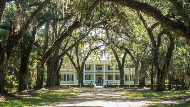 Pinterest Will Stop Promoting Former Slave Plantations As Wedding Venues | Betches