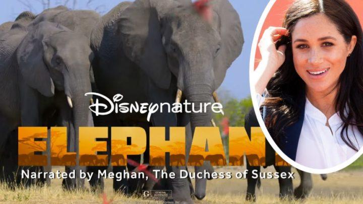 Meghan Markle's Disney Narration – What The Critics Are Saying! – Perez Hilton