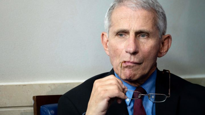 Dr. Anthony Fauci: Petition to name doctor 'sexiest man alive' gains steam